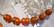 Polarishelmi luonnonvalkoinen (cream) matta puolipallo 12 mm (2/pss)