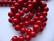 Osterinkuorihelmi syvänpunainen 8 mm (nauhassa n. 48 kpl)