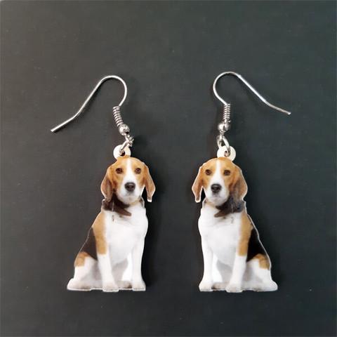 Beagle -korvakorut