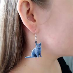 Brittiläinen lyhytkarva kissa -korvakorut