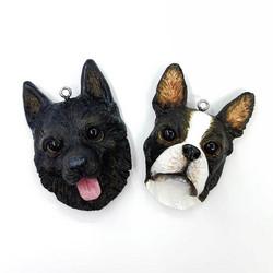 Kustomoitava koira- tai kissa-kaulakoru