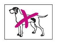 Ei koiria tarra 13x10