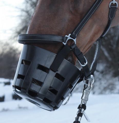 Hevosen kuonokoppa, ilman riimua