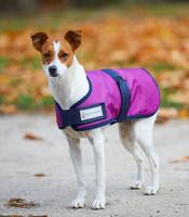 Koirien takki: Unicorn Hearts