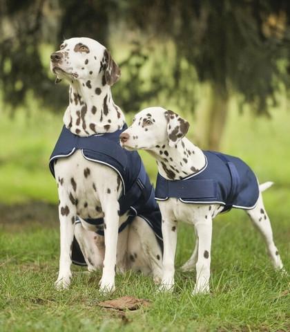 Koirien sadetakki