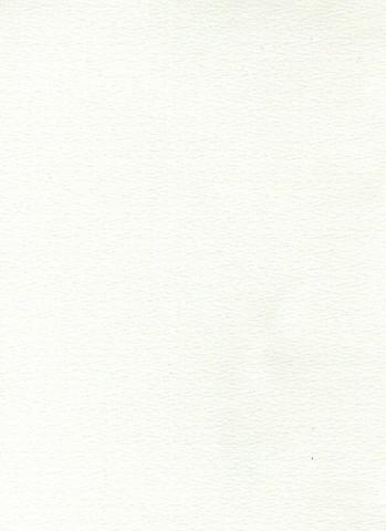 Martioitu kartonki: Valkoinen 1kpl