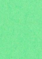 C6 Korttipohja: Keväänvihreä 1kpl