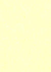 A4 Kartonki: vanilija 1kpl