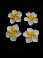 Kukka 1kpl: Valkoinen