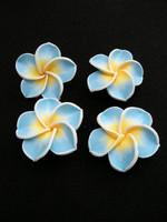 Kukka 1kpl: Vaaleansin.