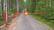 metsäautotie puomi toimitettuna 399e