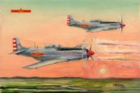 PLAAF P-51D/K Mustang 1/48