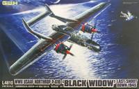 Northrop P-61B Black Widow 1/48