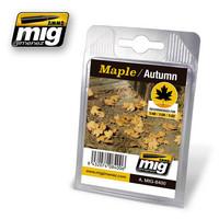 Maple Leaves Autumn Color