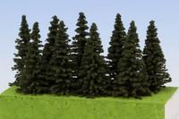Spruce (kuusi) korkeus: 40-60 mm