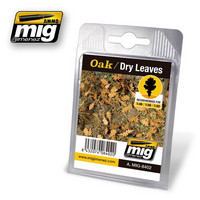 Oak Dry Leaves