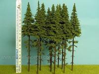 Spruce (Kuusi) with Trunk, Korkeus 180-220mm