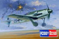Focke Wulf FW 190D-12 1/48