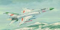 """SHENYANG F-8II """"FINBACK"""" -B 1/72"""