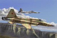 F-5E Tiger II Fighter 1/72
