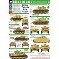 German Tanks in Italy #1 1/35