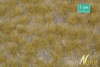 Long tufts of grass (Late fall) myöhäinen syksy 1/45