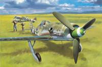 Focke Wulf Fw190D-13 1/48