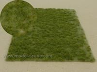 Middle Green Grass Tufts (Grass height 6mm, Sheet 18 X 28cm)