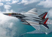 McDonnell-Douglas F-15E Strike Eagle  1/72
