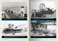 T-34 and the IDF, Captured Vehicles in IDF Service Vol.1