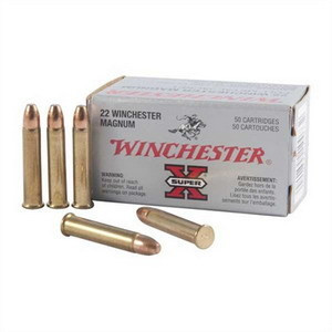 Winchester Varmint 22 WRM Hollow Point 40 gr