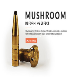 Fox Bullet. 0.30 cal  ( 308 )  165gr Lyijyvapaa luoti 50 kpl
