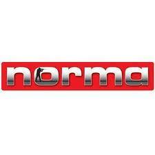Norma Magnum 308 Soft / Spire point / 11,6g / 180grs