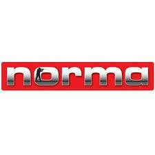 Norma Magnum 308 Soft / Spire point / 11,6g / 180grs