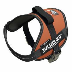 Julius-K9® IDC® Power koiran valjaat, Kuparinruskea alkaen 21.90€