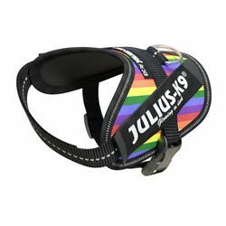 Julius-K9® IDC® Power koiran valjaat, Rainbow alkaen 21.90€