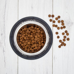 CLINIVET Large Breed Puppy 7,5 kg - Vehnätön penturuoka isojen rotujen pennuille ja emoille