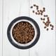 CLINIVET Grain Free Junior & Adult Sensitive Fish 2 kg - Viljaton kala-kasvis koiranruoka