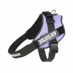 JULIUS-K9® IDC® Power koiran valjaat, Lila alkaen 21.90€