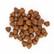 CLINIVET Puppy 1,5 kg - Vehnätön penturuoka kaikkien rotujen pennuille ja emoille