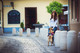 Julius-K9® IDC® Power koiran valjaat, Ranskan lippu alkaen 21.90€