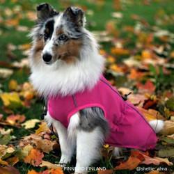 Softshell koirantakki pinkki