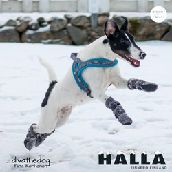 HALLA-Fleecetossut harmaa
