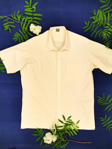 Miesten vaaleankeltainen puuvillapaita, XL