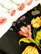 Tulppaanikuvioinen kiiltävä vintagehame, XXL