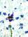 90-luvun valkoinen kukkapaita, viskoosia, XL
