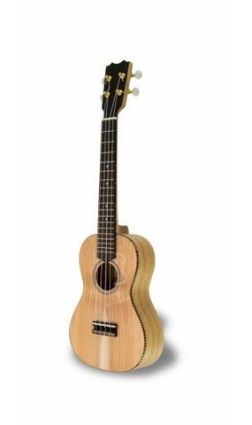 APC CT Concert ukulele (uusi)