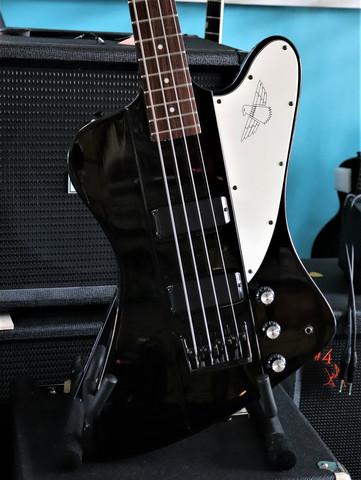 Tokai Thunderbird Basso (käytetty)