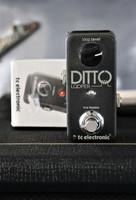 TC Electronic Ditto Looper (käytetty)
