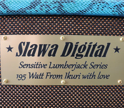 Slawa Digital Sensitive Lumberjack Series kitarakaappi (uusi, myyntitili)